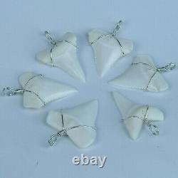 GemShark Shark Tooth Necklace 1.6 inch Great White Megalodon Necklace Charms