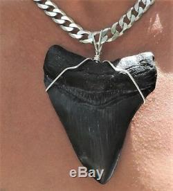 Huge 3 3/4'' Megalodon Sharks Tooth Necklace! Sterling Selver Chain No Repairs
