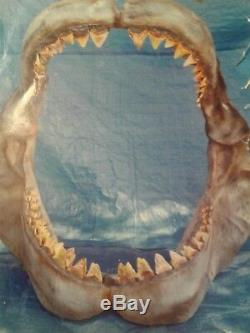 Megalodon Jaw Replica Hand Painted, Teeth cast from real Teeth. Over 180 teeth